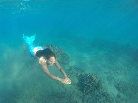 Mermaid spotted in Maui waters!