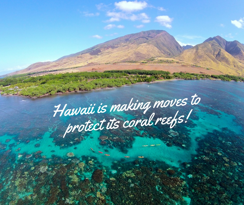 Hawaii is protecting coral reefs